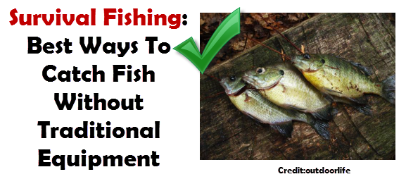how to catch fish without equipment