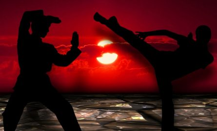 Martial Arts: The Best Combat Sports for Self-Defense